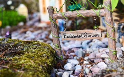How to Make a Rock Garden with the Family by Liam Mills